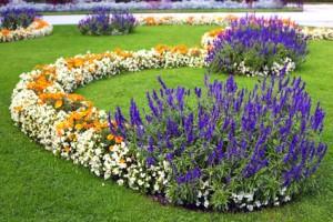 Architekt Ogrodu Projektowanie ogrodów Skierniewice Zakładanie i pielęgnacja