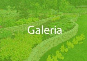 Galeria Fotografie Przykłady Architekt Ogrodu