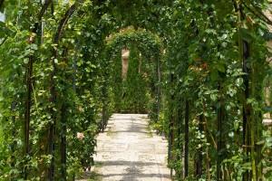 Architekt Ogrodu Projektowanie i wykonanie ogrodów Warszawa i okolice, architektura, architekt, ogrody, architekt-ogrodu, architektura krajobrazu, warszawa, projektowanie ogrodów, ogródki, Projektowanie ogrodów przydomowych i ogrodów reprezentacyjnych dla firm