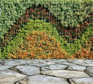Modernizacja ogrodu. Strona architekta ogrodu